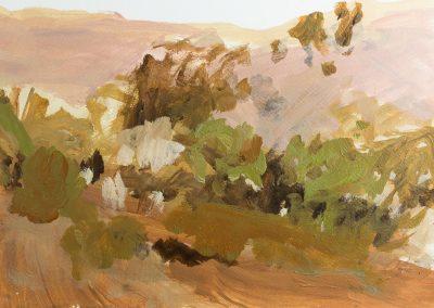 Desert Reflections IV