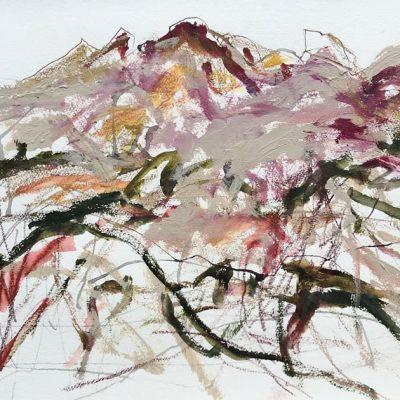 Central Desert Days - Australian Landscape Artist